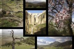 HRE-photos-andalucian-landscape
