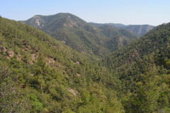Troodos_mountains